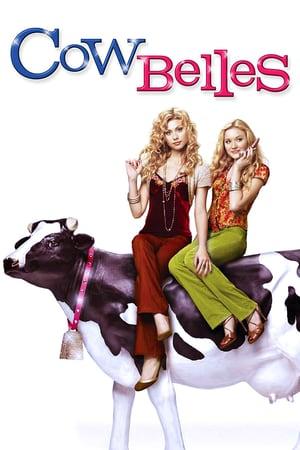Коровы красавицы
