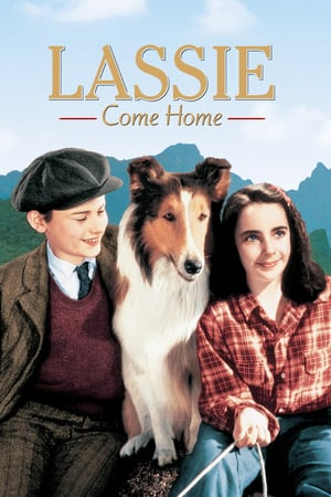 Лесси возвращается домой