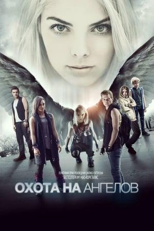 Охота на ангелов