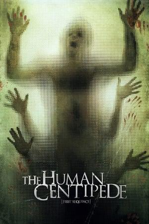 Человеческая многоножка (Первое построение)