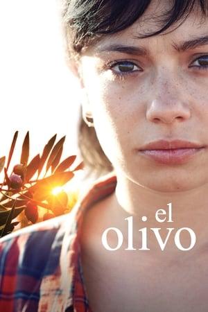 Олива