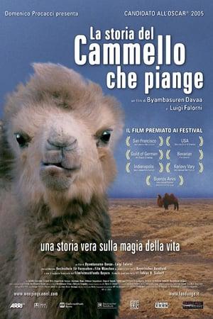 Рассказ плачущего верблюда