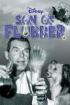 Сын Флаббера