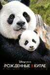 Рождённые в Китае
