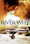 Река-вопрос