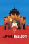 Белый шар