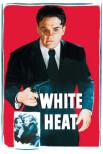 Белая горячка