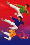 Три ниндзя наносят ответный удар