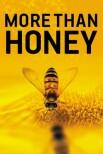 Больше чем мед