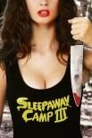Лагерь для сна Sleepaway III: Подростковая пустошь