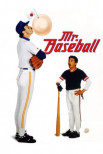 Мистер Бейсбол