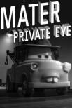 Детектив Мэтр