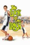 Ирландская удача