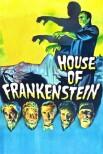 Дом Франкенштейна