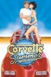 Лето в поисках 'Корвета'